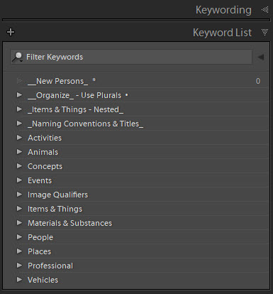 "Here is an example of my ""Top Level Keywords"" in Lightroom. Yours will vary."